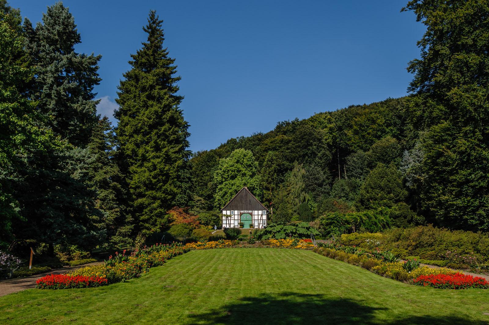 Impressionen verein freunde des botanischen gartens - Ankergarten bielefeld ...