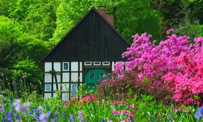 Botanischer garten verein freunde des botanischen - Ankergarten bielefeld ...