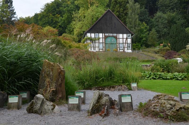 steinexponate_botanischer_garten_bielefeld