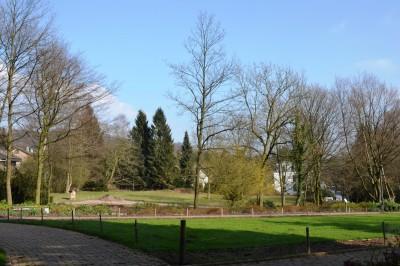 Blick vom Rasen-Parterre auf die Erweiterungsfläche
